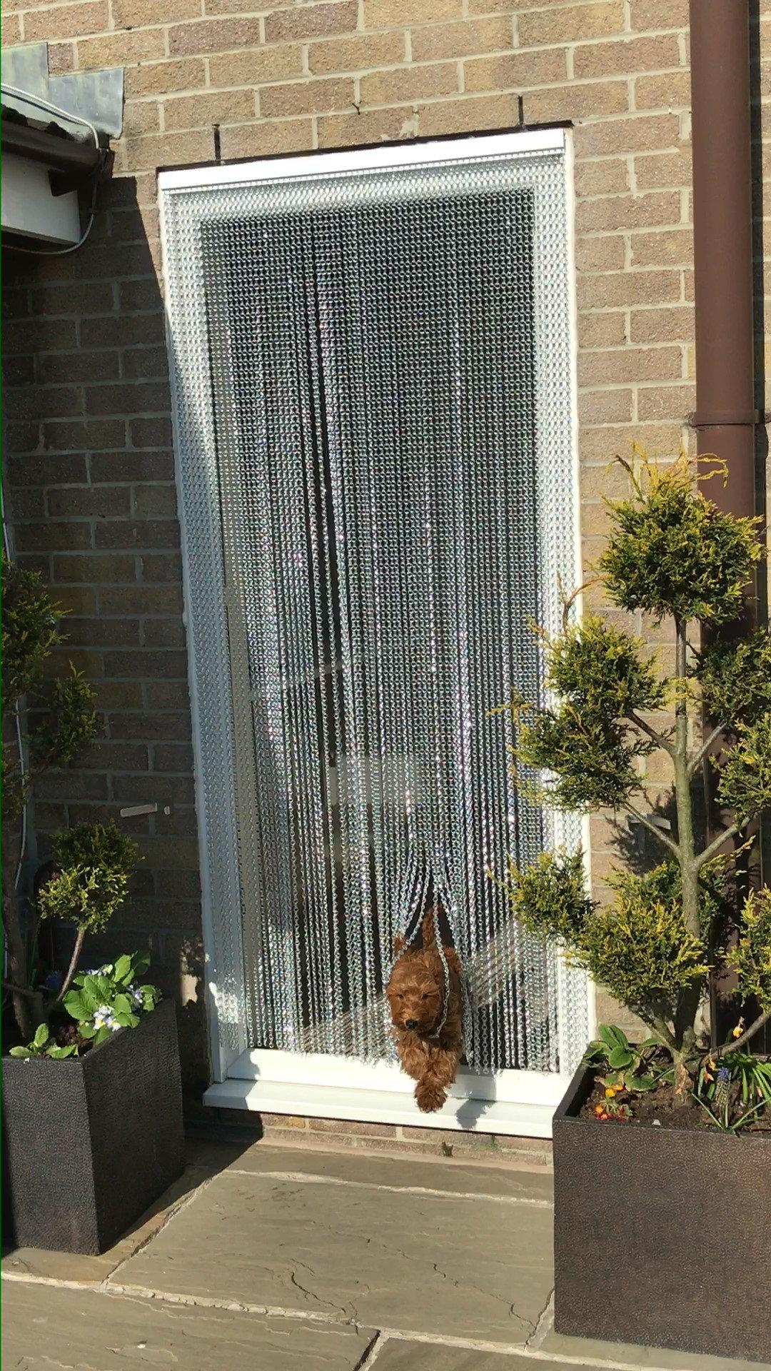 Pet Friendly Chain Fly Screens